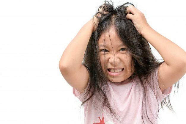 معرفی کامل شپش موی سر + راه تشخیص و درمان آن