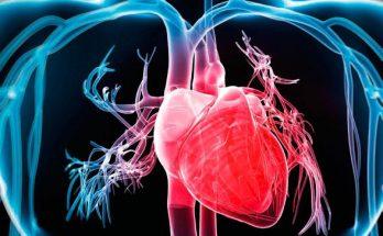با روماتیسم قلبی بیشتر آشنا شویم.