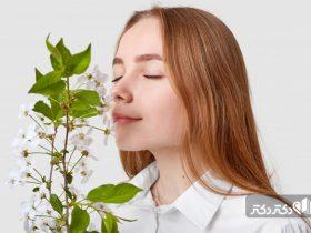 اختلالات بویایی