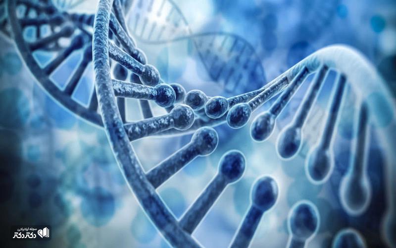 رمزگشایی-DNA