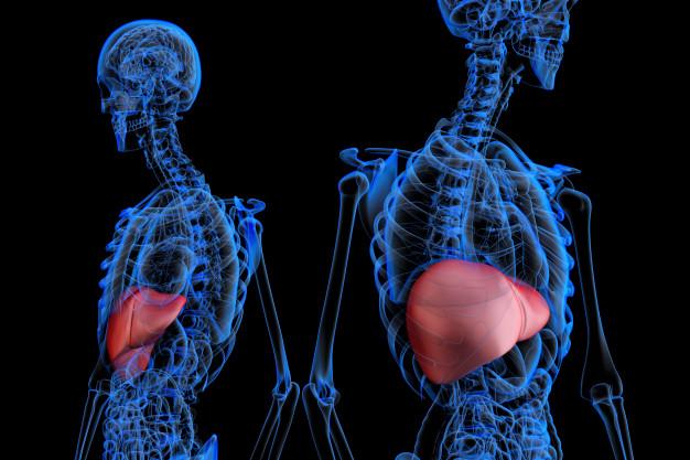 بیماری هپاتیت خود ایمنی