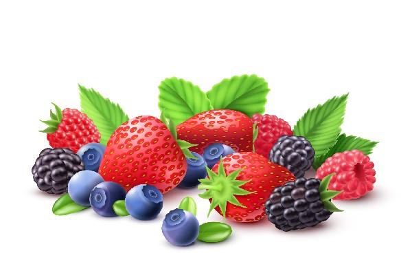 انواع توت برای سلامت پوست