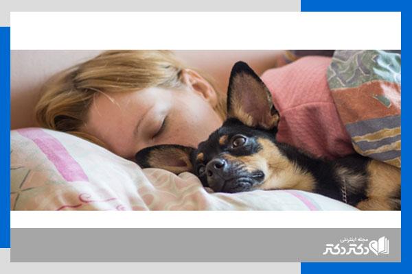 حیوان خانگیتان در تختخواب
